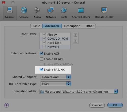 Ubuntu Server in VirtualBox: PAE/NX option selection