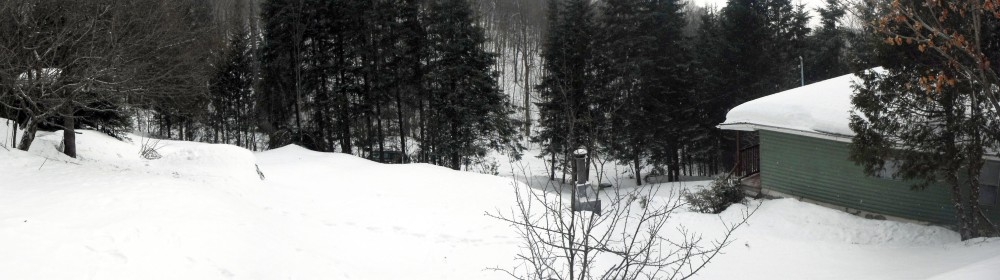 Panoramic view. Brrrr :)