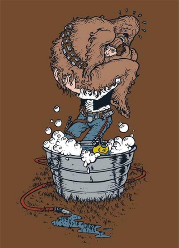 Chewbacca vs the Bath