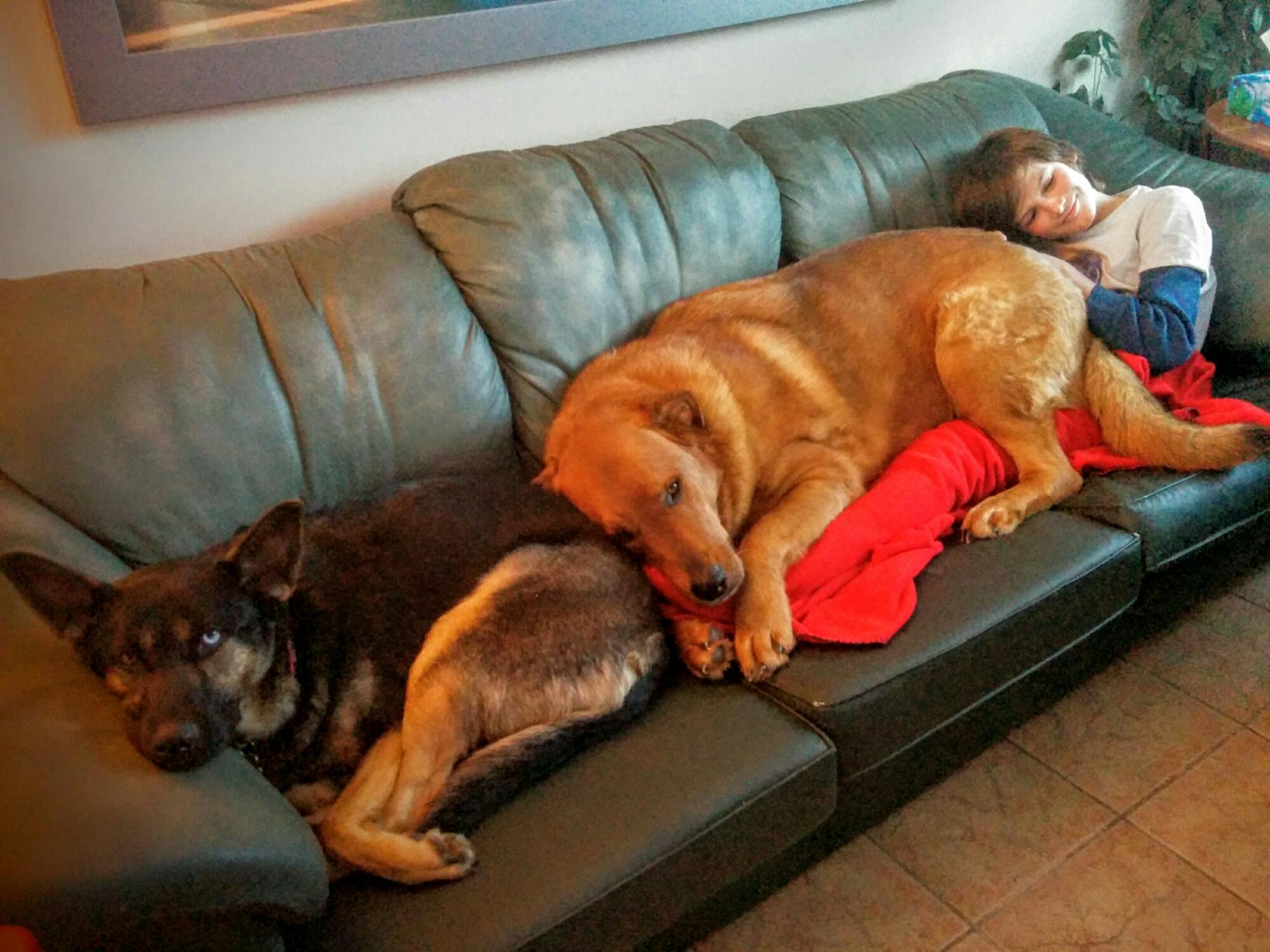superb the big comfy couch cast portrait home gallery. Black Bedroom Furniture Sets. Home Design Ideas